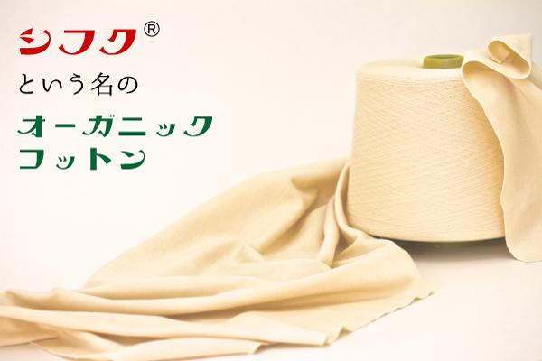 shifuku-hd